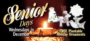 Seniors-Holiday Ornaments '15