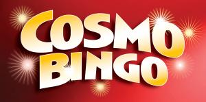 Cosmo Bingo-February '16 Image
