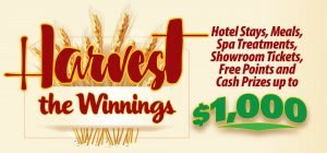 Web Header Promotion - Harvest the Winnings