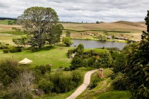 lookout to Hobbiton playground in new zealand
